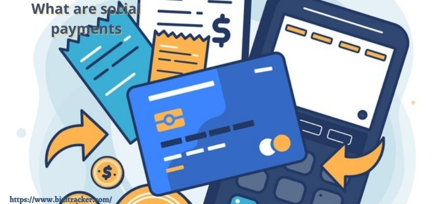 What are Social Payments?