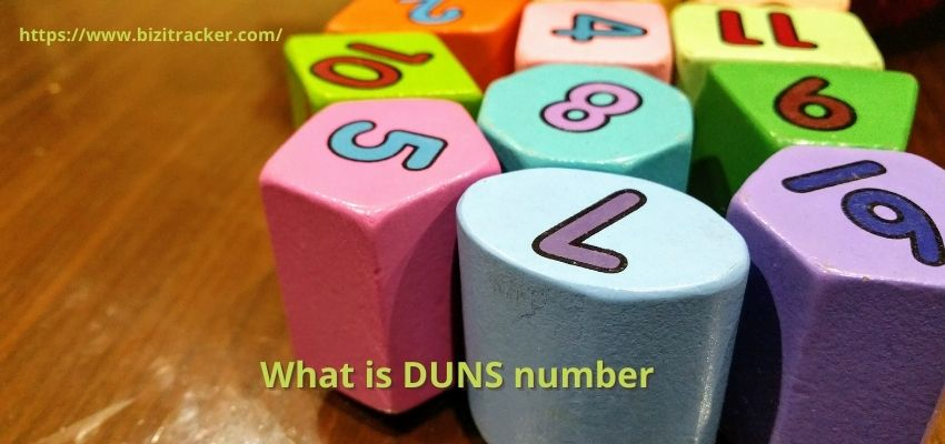 What is the DUNS Number?