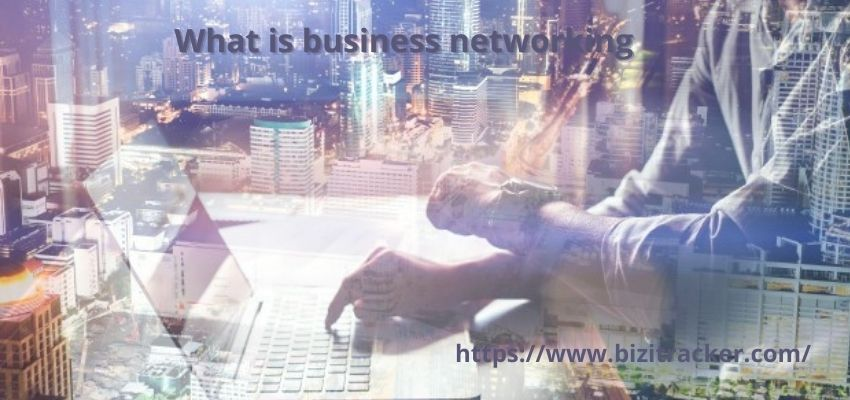 What is Business Networking?