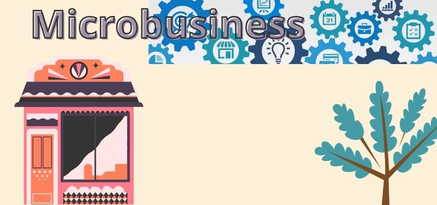 What is microbusiness?