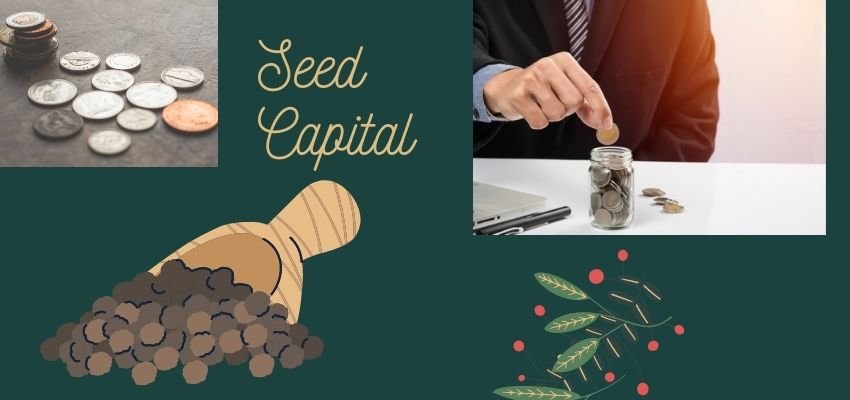 What is Seed Capital?