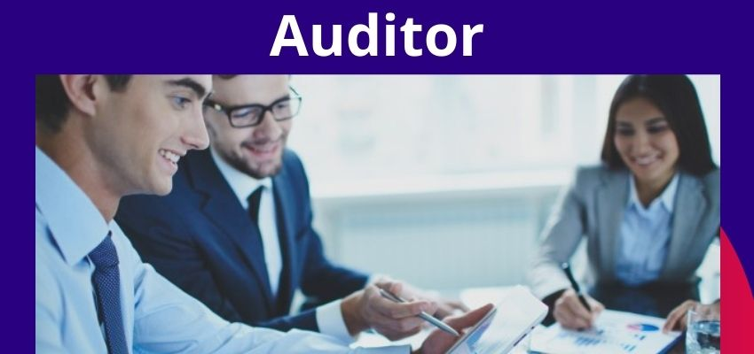 Who is an auditor?